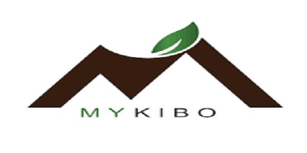 Sales Officer at MyKibo: (Deadline 15 October 2021)