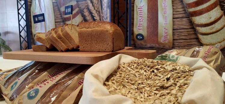 Buğdayın atası Bursa topraklarında üretiliyor