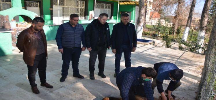 Kilis Belediyespor için adak kurbanı kestirdi