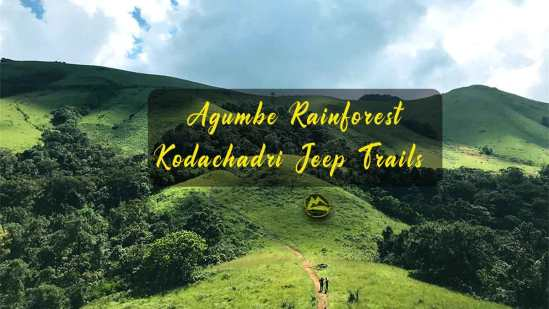Agumbe Rainforest & Kodachadri Trek from Hyderabad, New Year Trip 2021