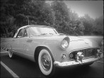 Here's a classic Thunderbird. The color was really pale and didn't show up well when I edited the photo. Black and white seemed the better choice.