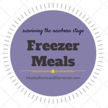 Freeze-ahead meals for new parents via www.muddybootsanddiamonds.com