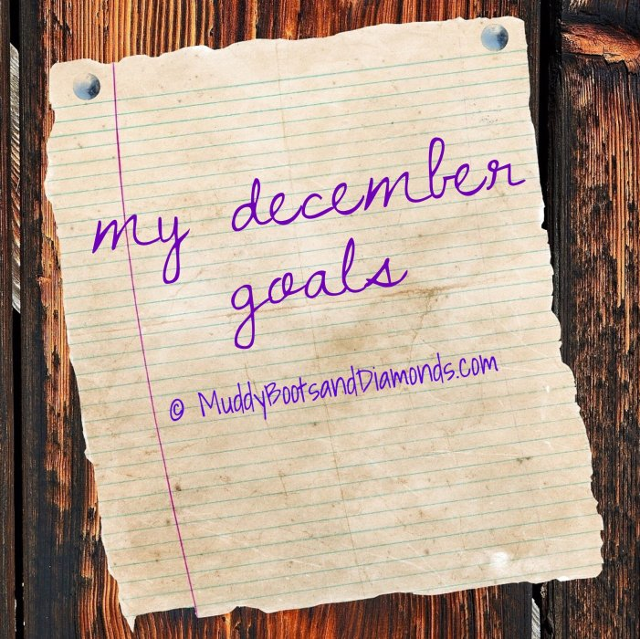 December Goals via MuddyBootsandDiamonds.com