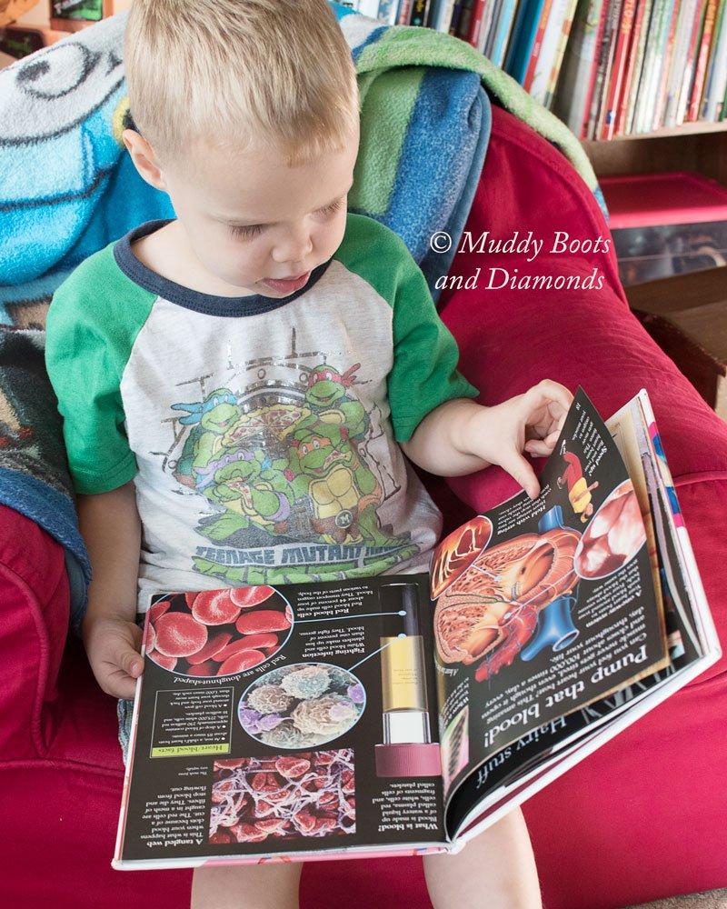 How I got my 3 year old to enjoy books | Unlikely Books My 3 Year Old Loves via muddybootsanddiamonds.com