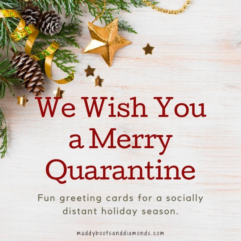 Pine Branch Pine Needles Confetti Stars with text overlay We Wish You A Merry Quarantine fun greeting cards for a socially distant holiday via Muddy Boots and Diamonds blog