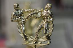 Martial Arts Competition Trophy Top