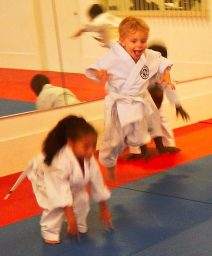 Martial Arts Karate Tigers Dragons Jumping