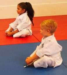 Martial Arts Karate Tigers Dragons Sitting