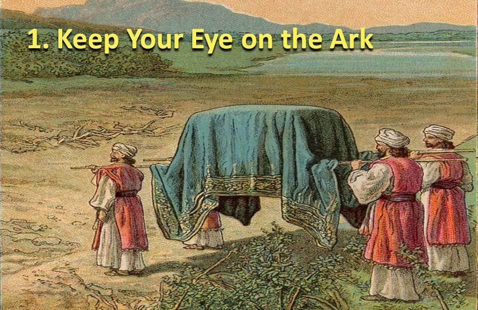 Keep Your Eye on the Ark