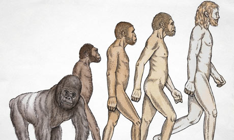 Evolution-from-ape-to-hum-001
