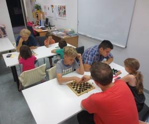 Šahovska radionica