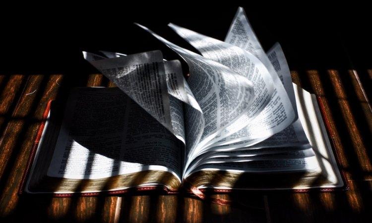 arguing Bible