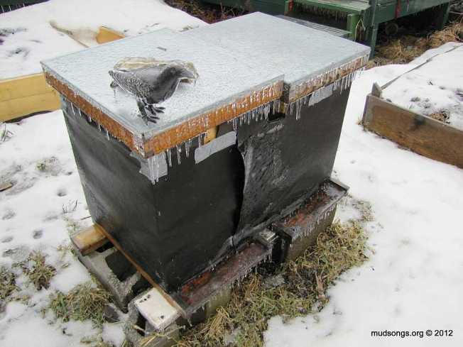 hives-on-ice-IMG_6934