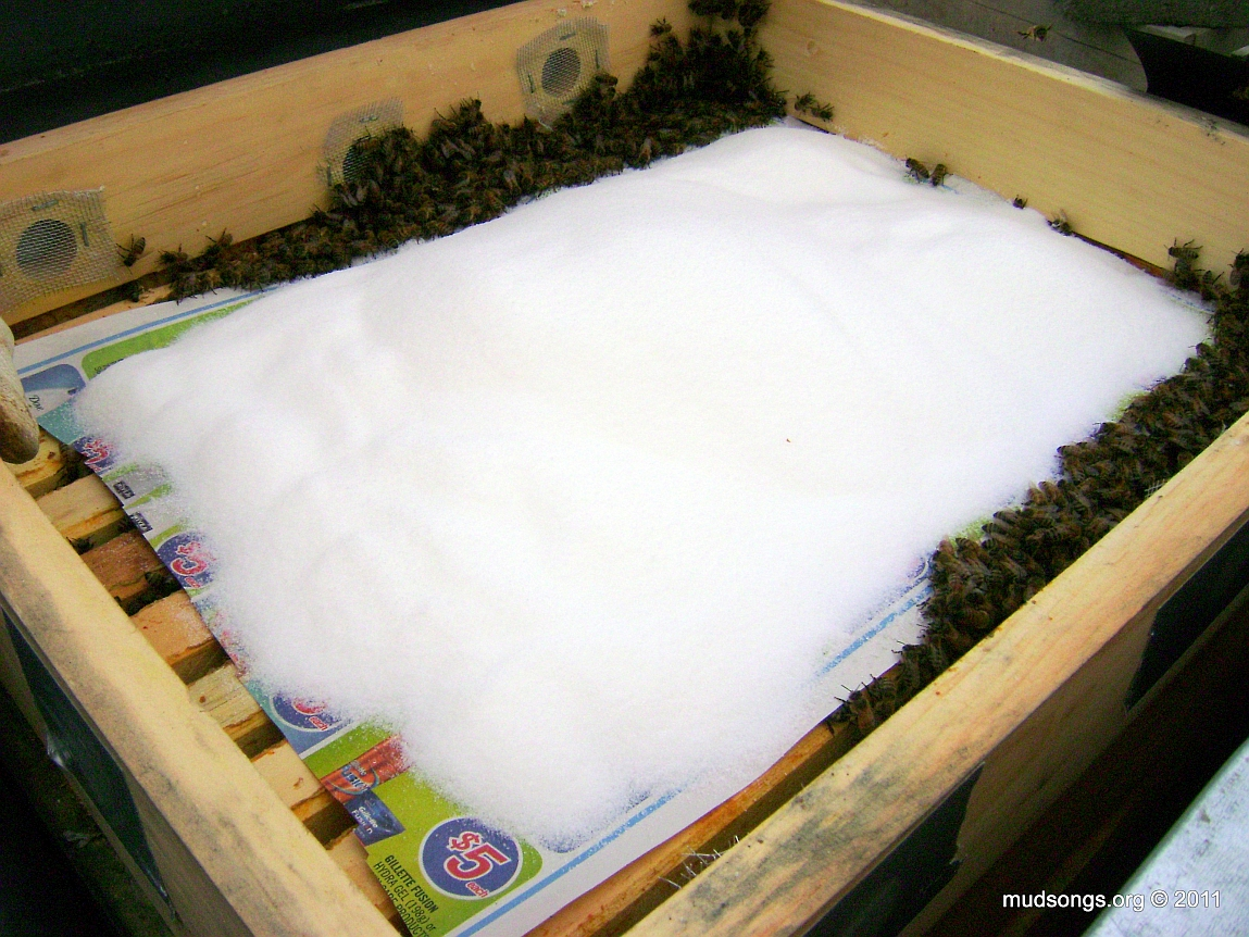How to make a moisture quilt for a langstroth hive honey - 2 Kg Of Dry Sugar Over The Top Bars