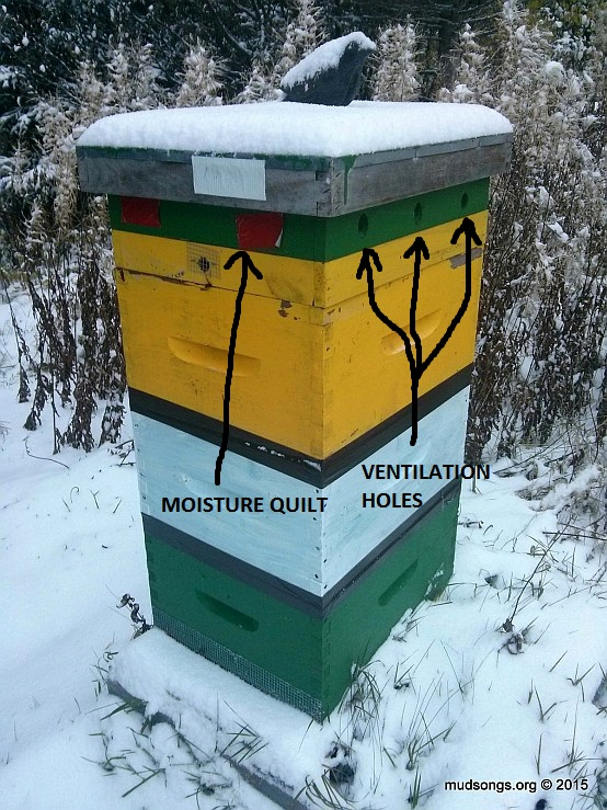 A ventilation rim that was converted into a moisture quilt.