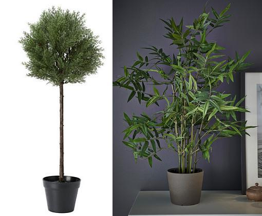 Marie kondo la buena vida - Plantas ikea naturales ...