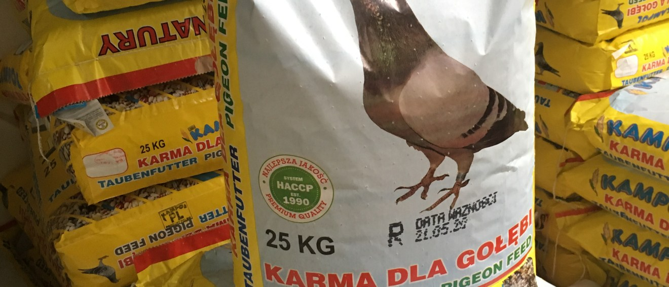 Taubenfutter Kampol