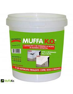 Il detergente antimuffa per pareti combat 222 è un prodotto specifico per la pulizia delle superfici interne ed esterne, prima della pitturazione. Prodotti Antimuffa Come Togliere La Muffa Dai Muri E Soffitti