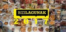 Bizi2017ama