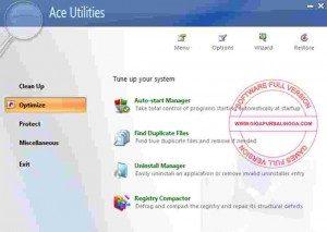 1615713768_393_ace-utilities-full1-300x213-5737946