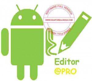apk-editor-pro-terbaru-300x263-5301209