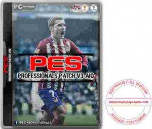 pes-professionals-patch-2016-v3-300x256-2602244