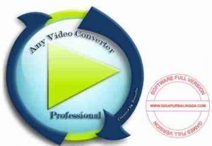 any-video-converter-professional-full-version-300x207-5446418