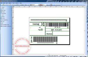 zebradesigner-pro-full-crack1-300x194-6393277