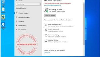windows-10-20h2-compact-ultra-lite-x641-7824173