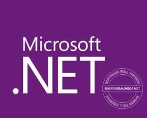 microsoft-net-framework-5-0-2325854