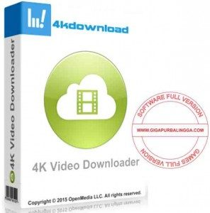 4k-video-downloader-full-296x300-9984550