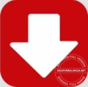 kotato-all-video-downloader-pro-full-crack-3846287