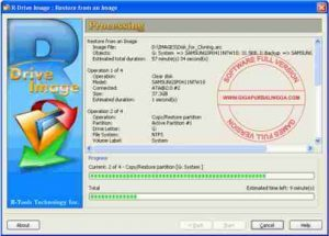 r-drive-image-300x215-7064305
