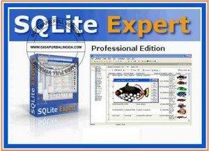 sqlite-expert-professional-v3-5-60-2480-full-crack-300x217-8017717