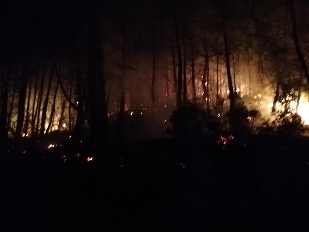 Göcek'teki orman yangını kontrol altına alındı
