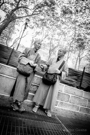 NY Monks