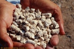 animal-feed-from-cassava