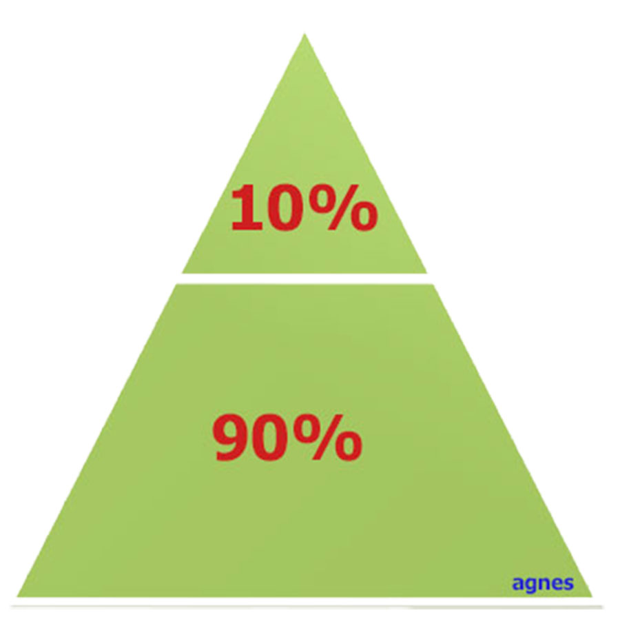 Where do you fall on the Success Pyramid?