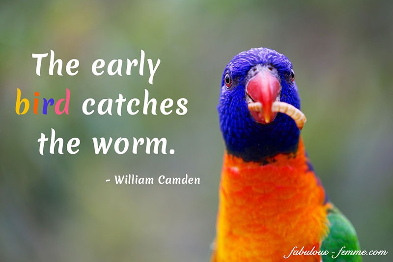 You must be an early bird to succeed in life