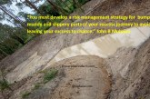 Risk management strategy for your success