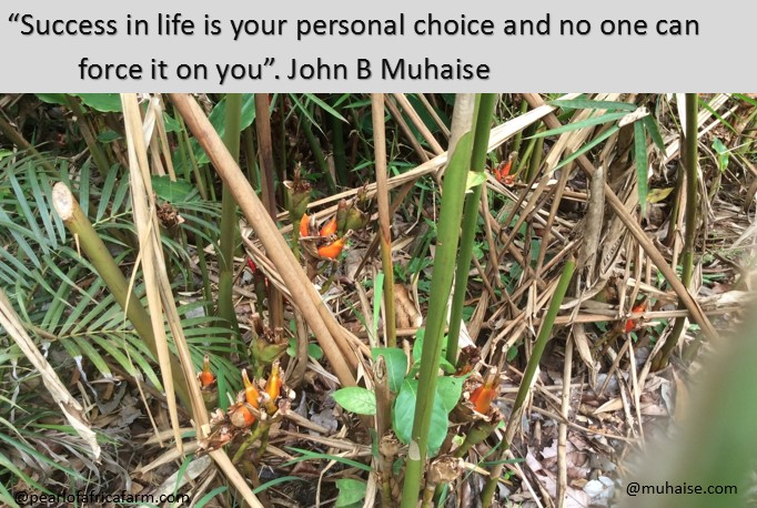 Success is personal choice