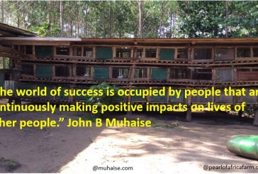 Making positive impact