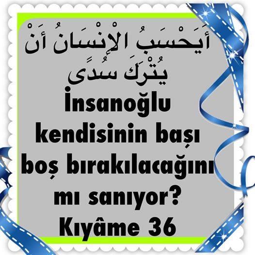 Kuran Ayeti