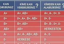 Her şeyin Başı Sağlık Köşemiz: Hangi Kan Grubu Hangi Kan Grubundan Kan Alıp Verir :)
