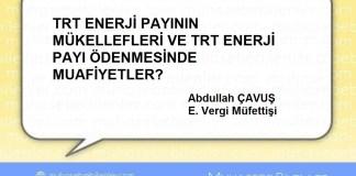 TRT ENERJİ PAYININ MÜKELLEFLERİ VE TRT ENERJİ PAYI ÖDENMESİNDE MUAFİYETLER?