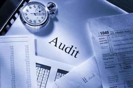 Auditorun peşəkar fəaliyyəti, Kənar audit, Daxili Audit, auditorlar palatası,
