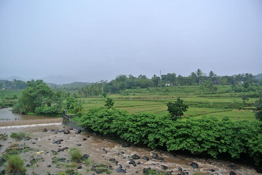 Pangandaran – Borobudur