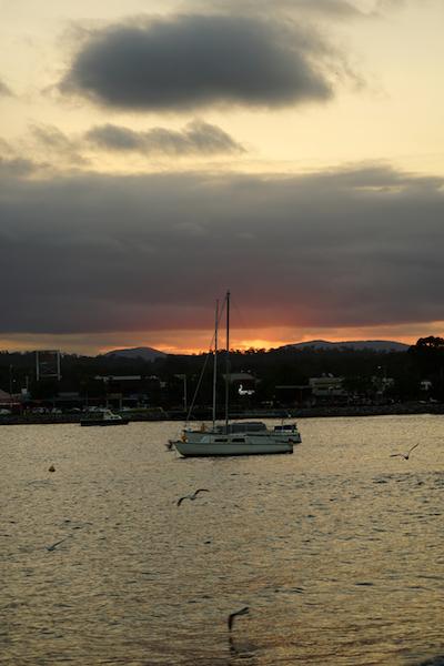 De 'Oyster Trail'. Bateman's Bay, Australië.