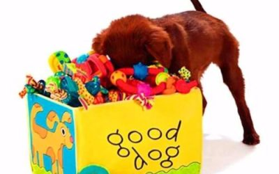 Higiene dos Brinquedos Pets