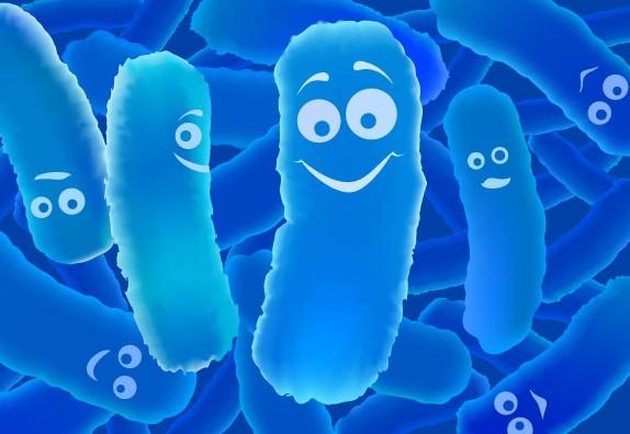 Resultado de imagem para probióticos